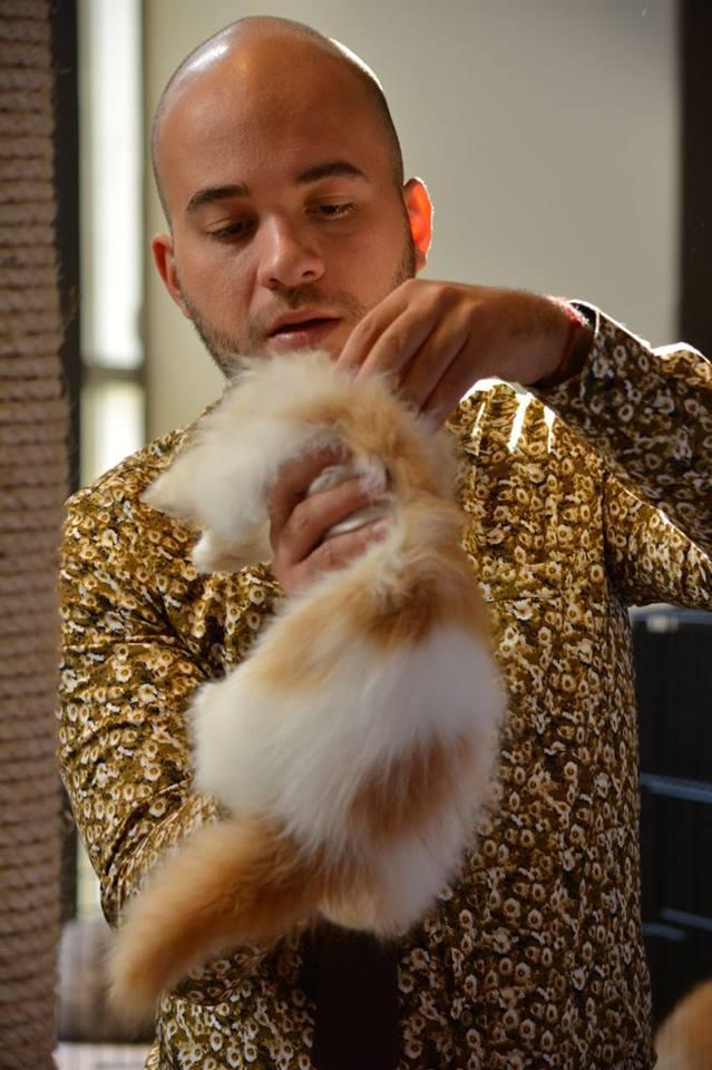 Tishacats - shows28